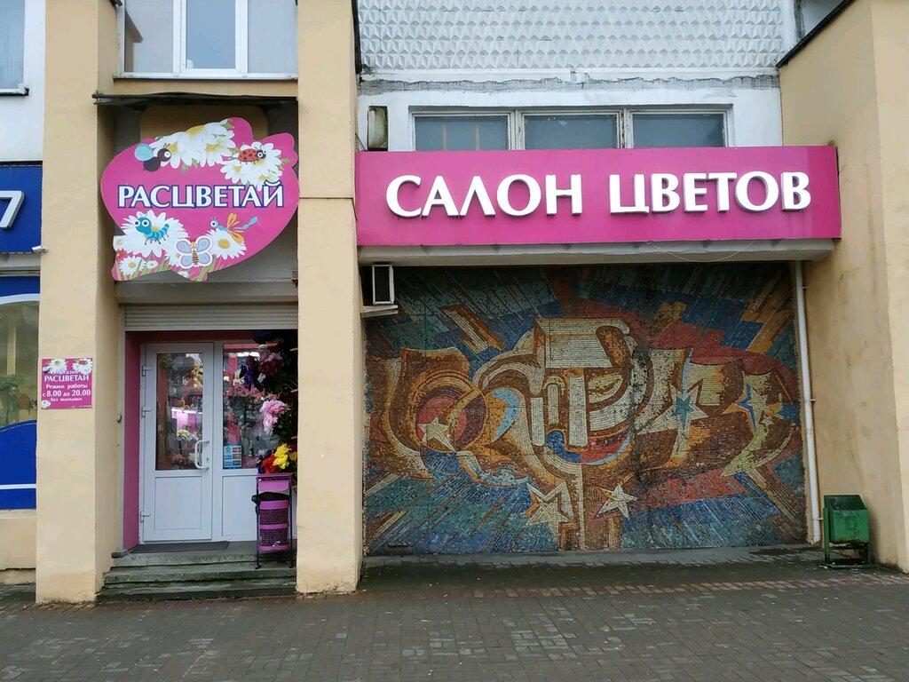 магазин цветов — Расцветай — Витебск, фото №2
