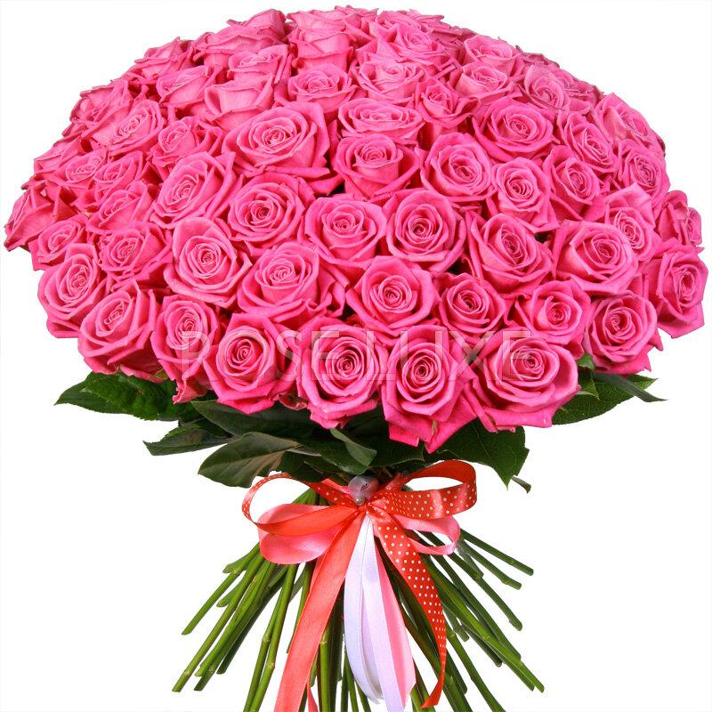 Поздравление от донны розы нас проводятся