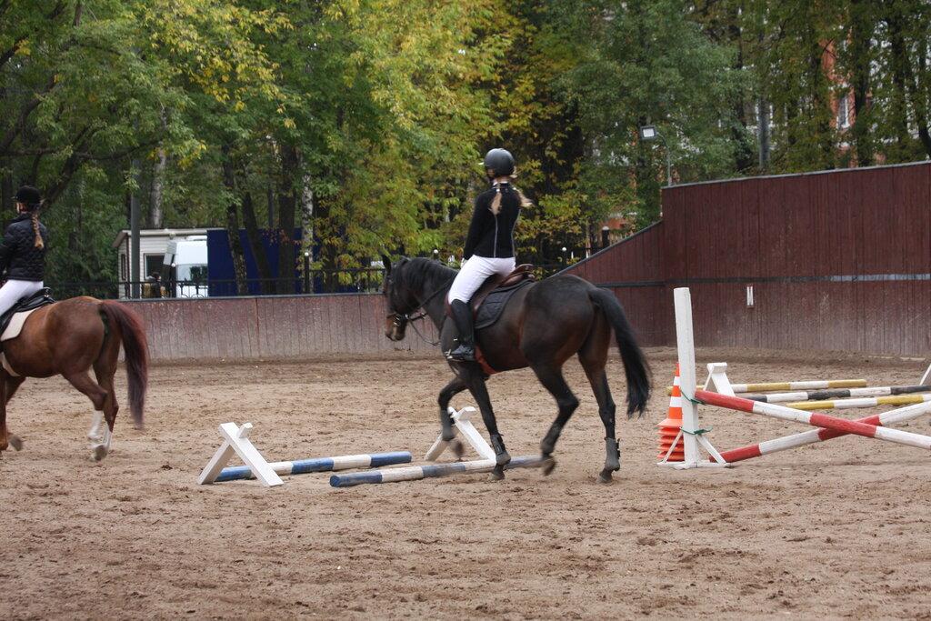 конный клуб в москве фили
