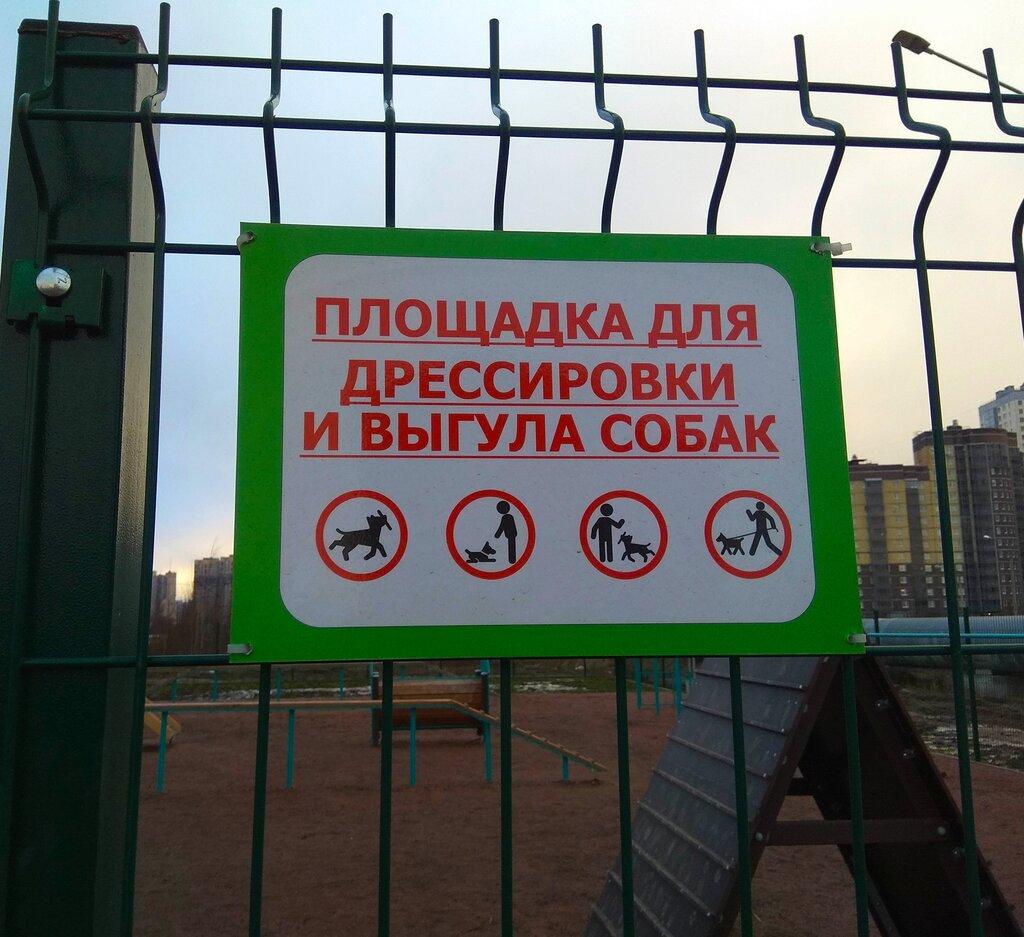 требования к площадкам для выгула собак