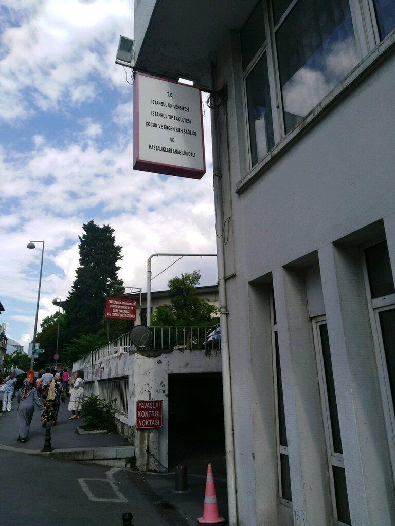 hospital — İstanbul Tıp Fakültesi, Çocuk Psikiyatrisi — Fatih, photo 2