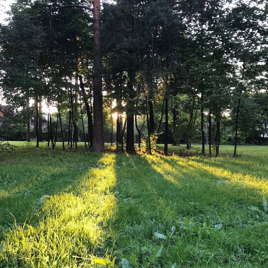 Картинки ленинского парка