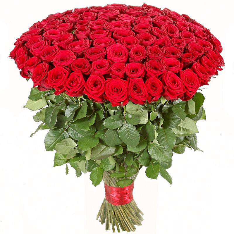 картинки с огромным букетом цветов