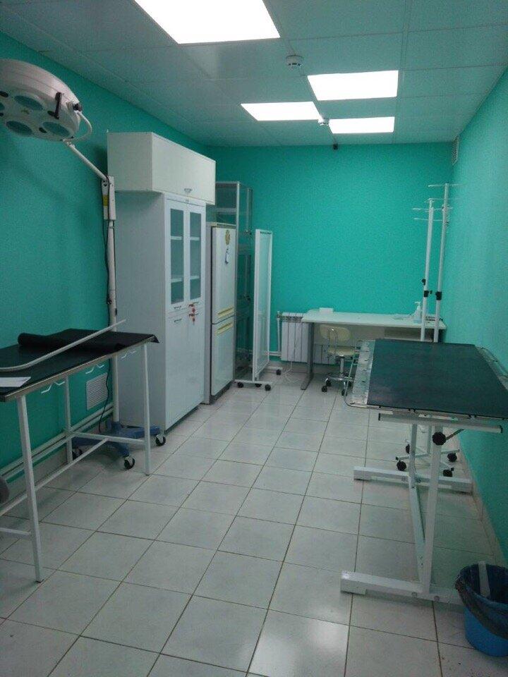 ветеринарная клиника — Ветко — Тула, фото №8