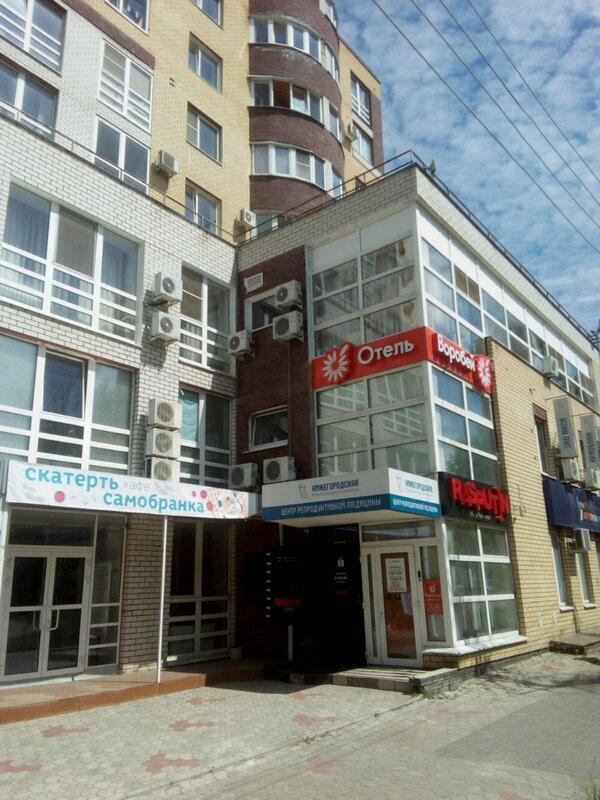 Бизнес-отель Воробей