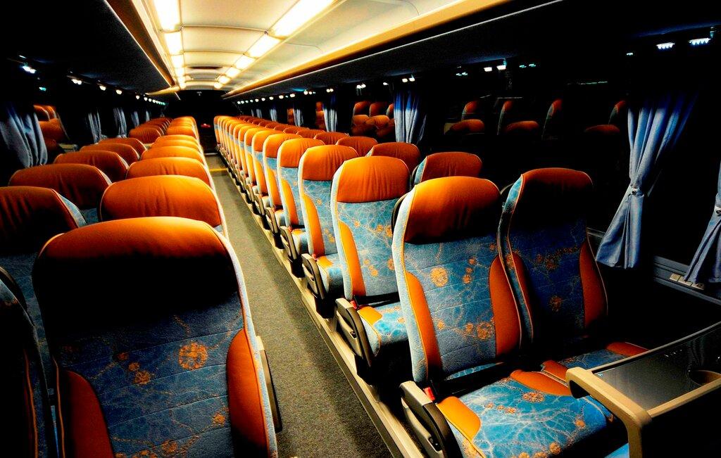 хотите получить фото экскурсионных автобусов внутри медсестры