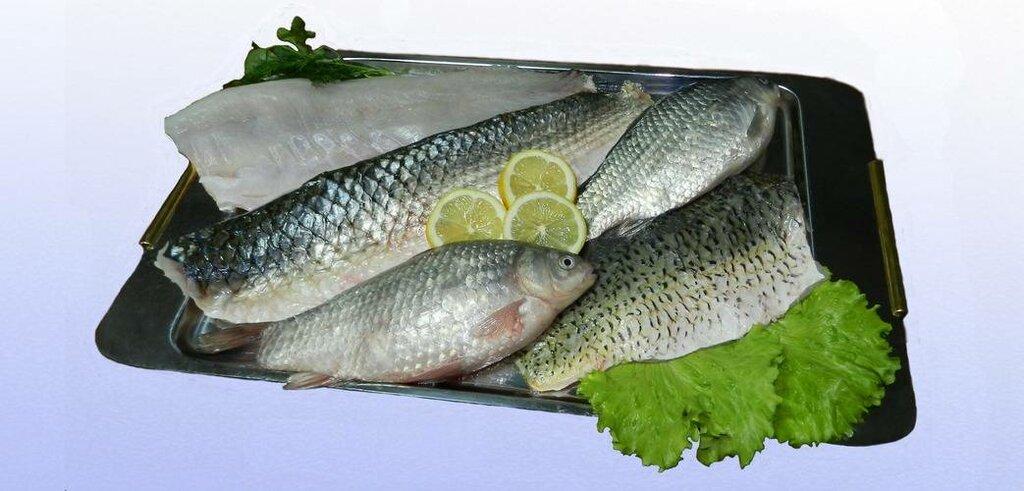 Alfa-Mius-2 Llc , fish and seafood wholesale, Russia, Rostov Region