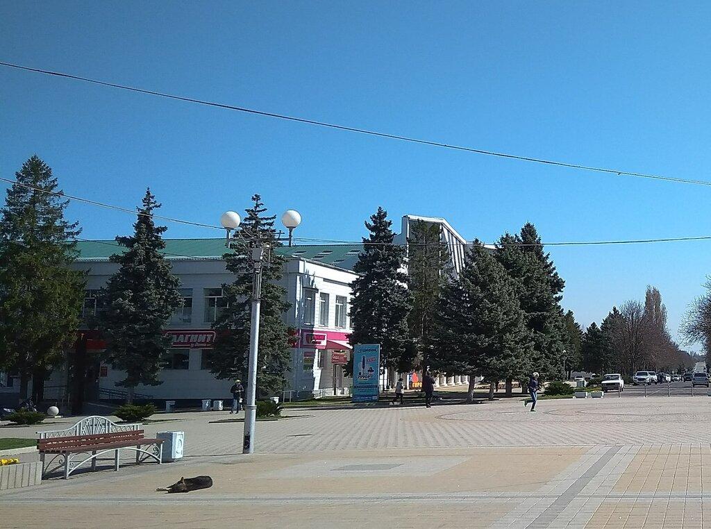 Выселки краснодарский край фото отзывы