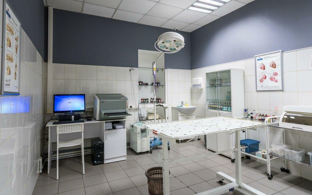 кабинет проект ветеринарной клиники фото очага