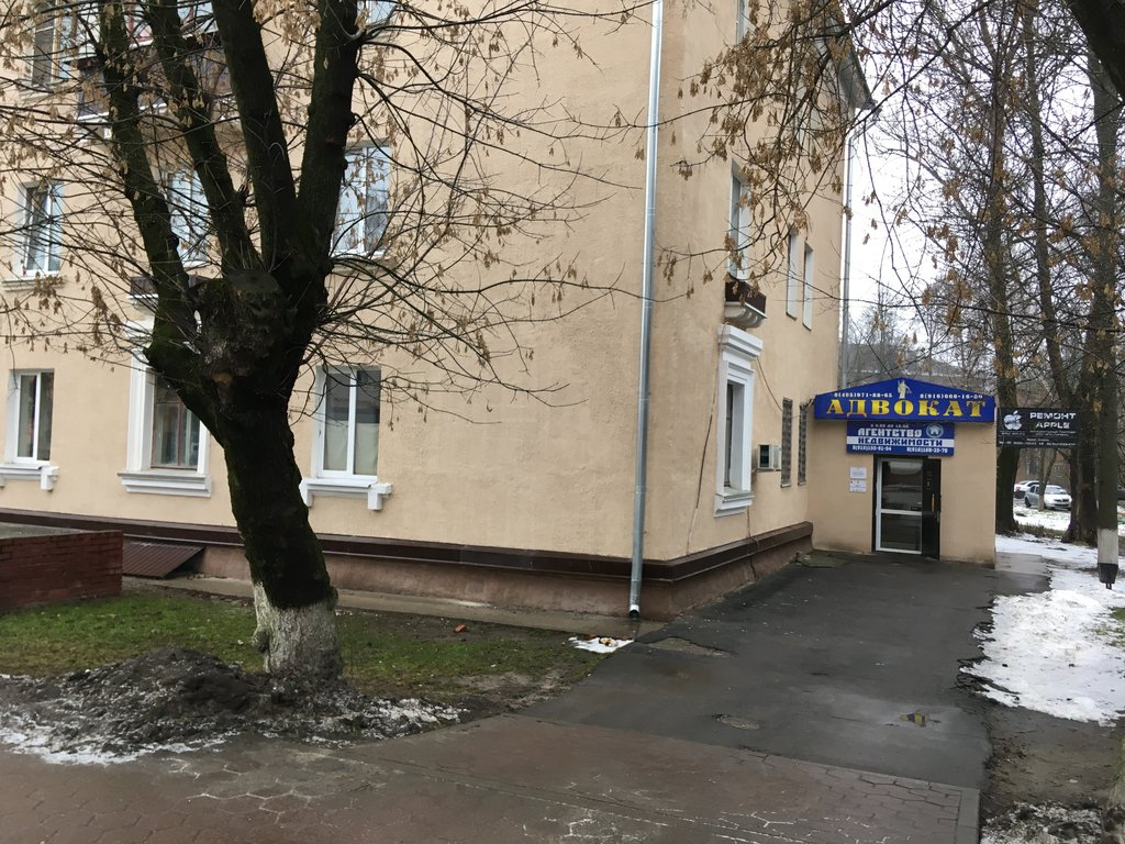юридические консультации город домодедово