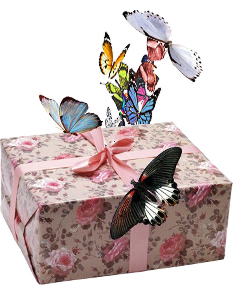 Открытка живые бабочки, днем