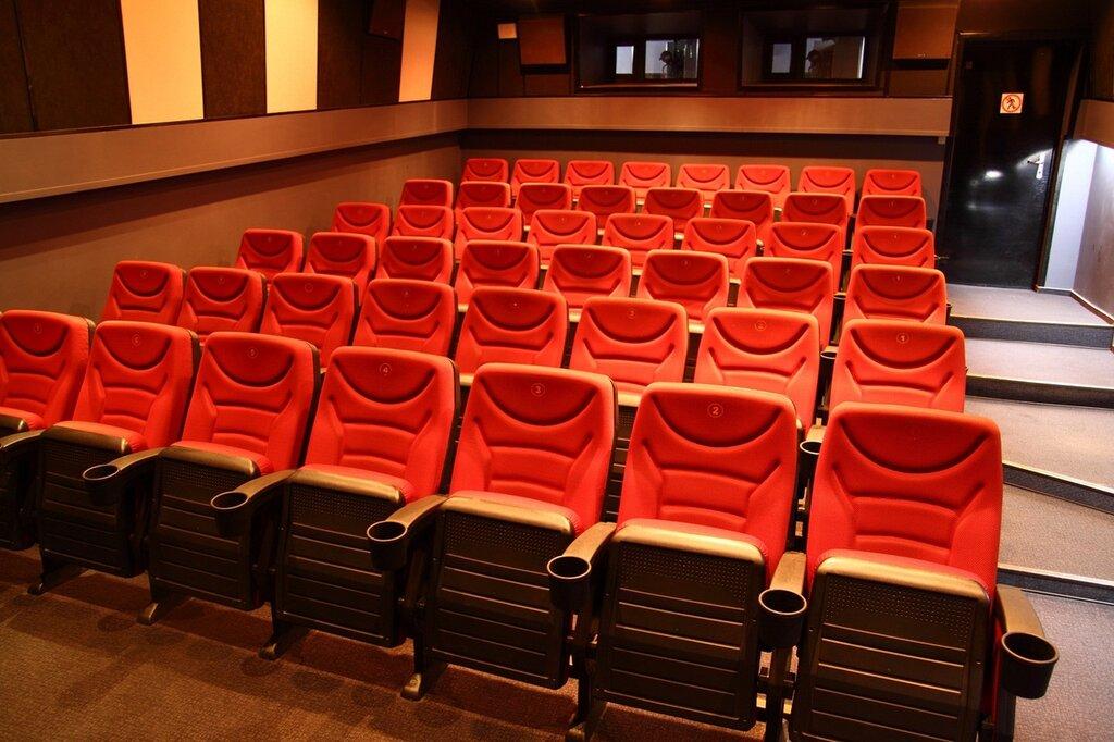 была кинотеатры киева картинки они позируют форме