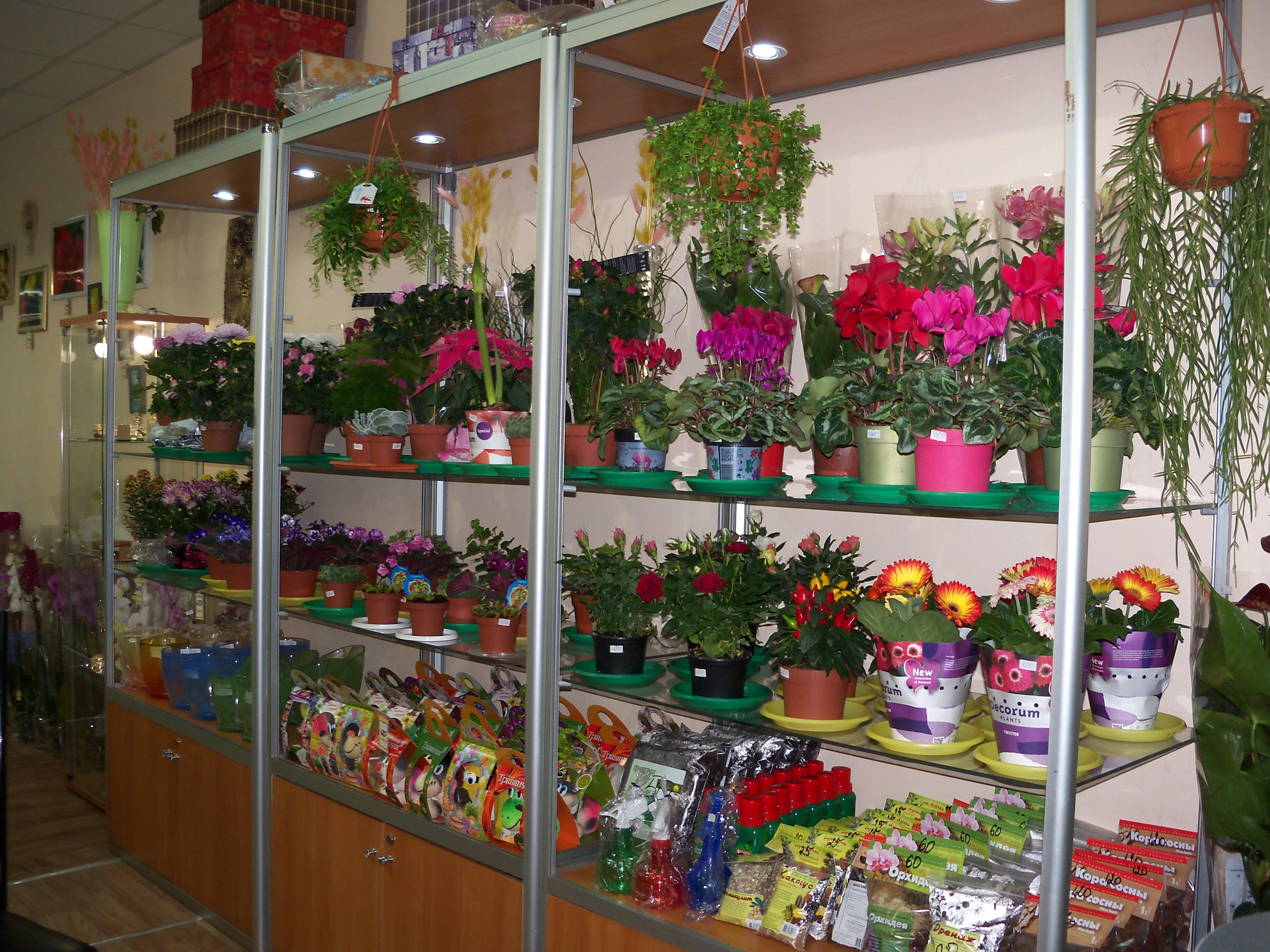 Букет, флора дизайн магазин цветов вольск саратовская область