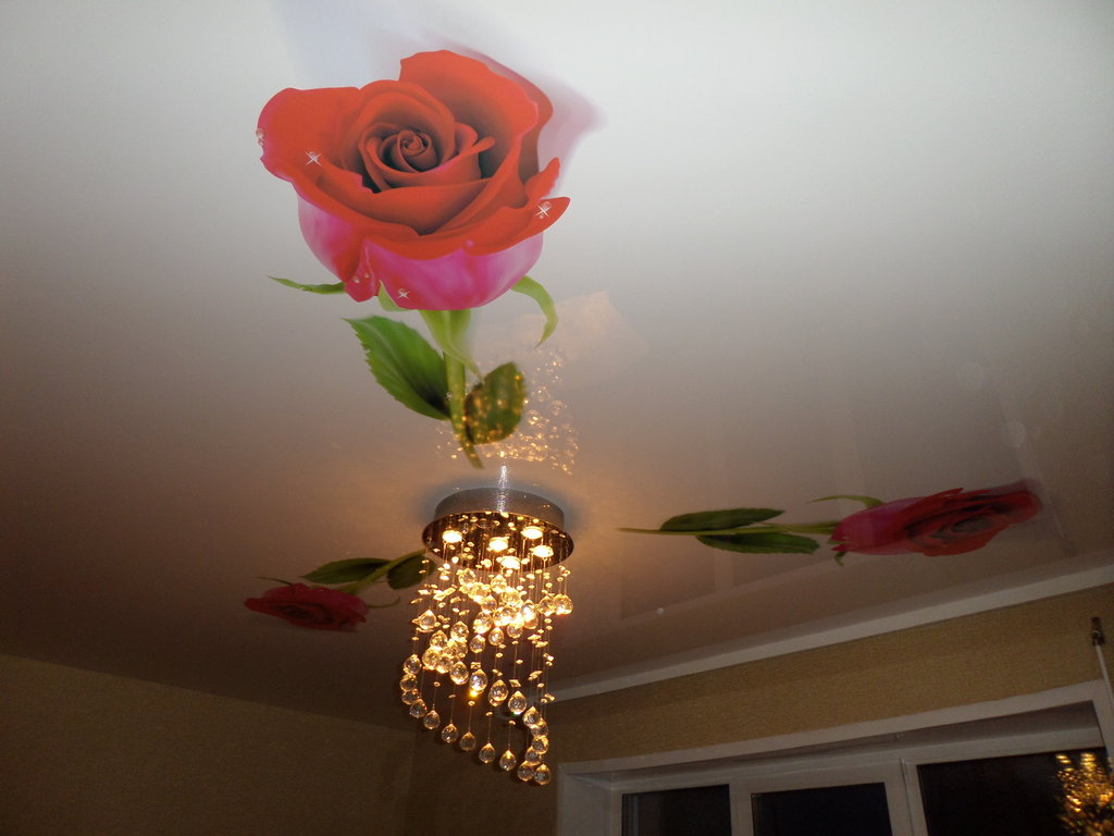 Картинки розы на потолке