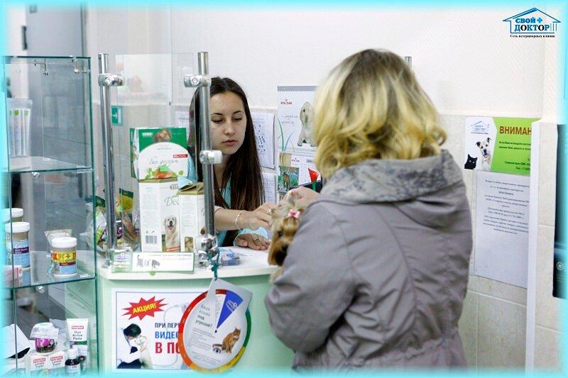 ветеринарная клиника — Свой доктор — Москва, фото №4
