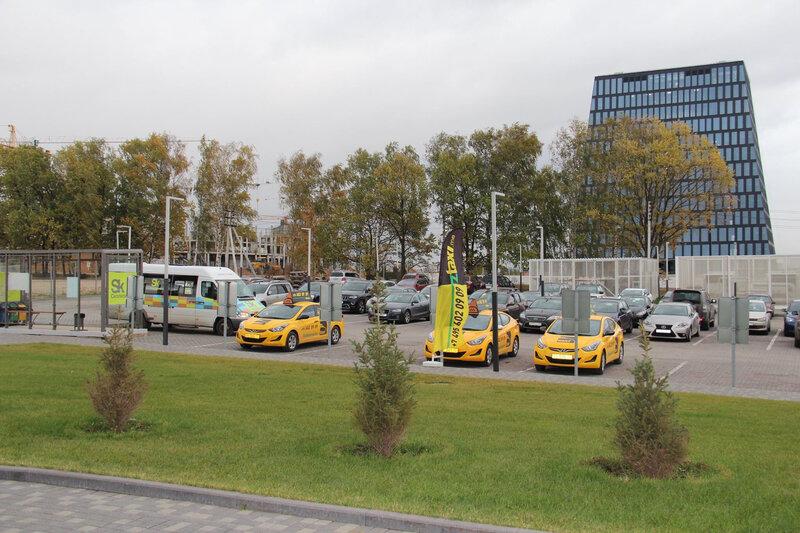 Зеленоглазое такси - фотография №9