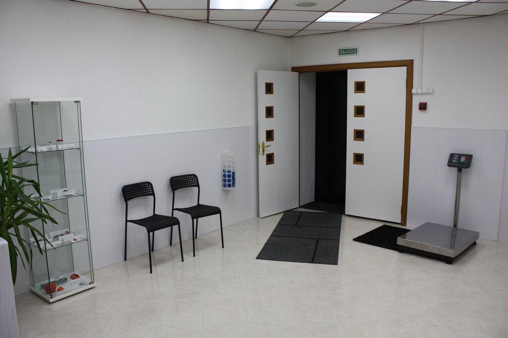 ветеринарная клиника — Клиника ветеринарной стоматологии и пластической хирургии доктора Гиль — Санкт-Петербург, фото №2