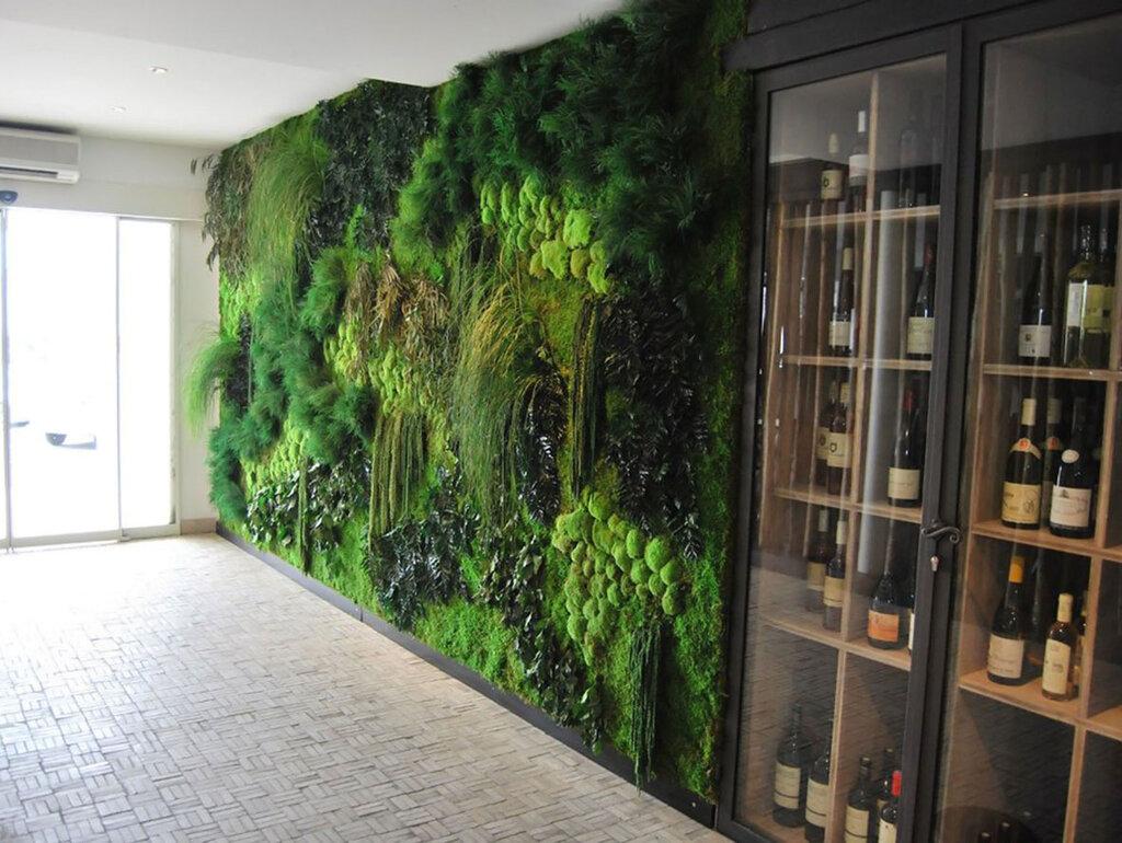 это тем, на стене мох в квартире дизайн фото что