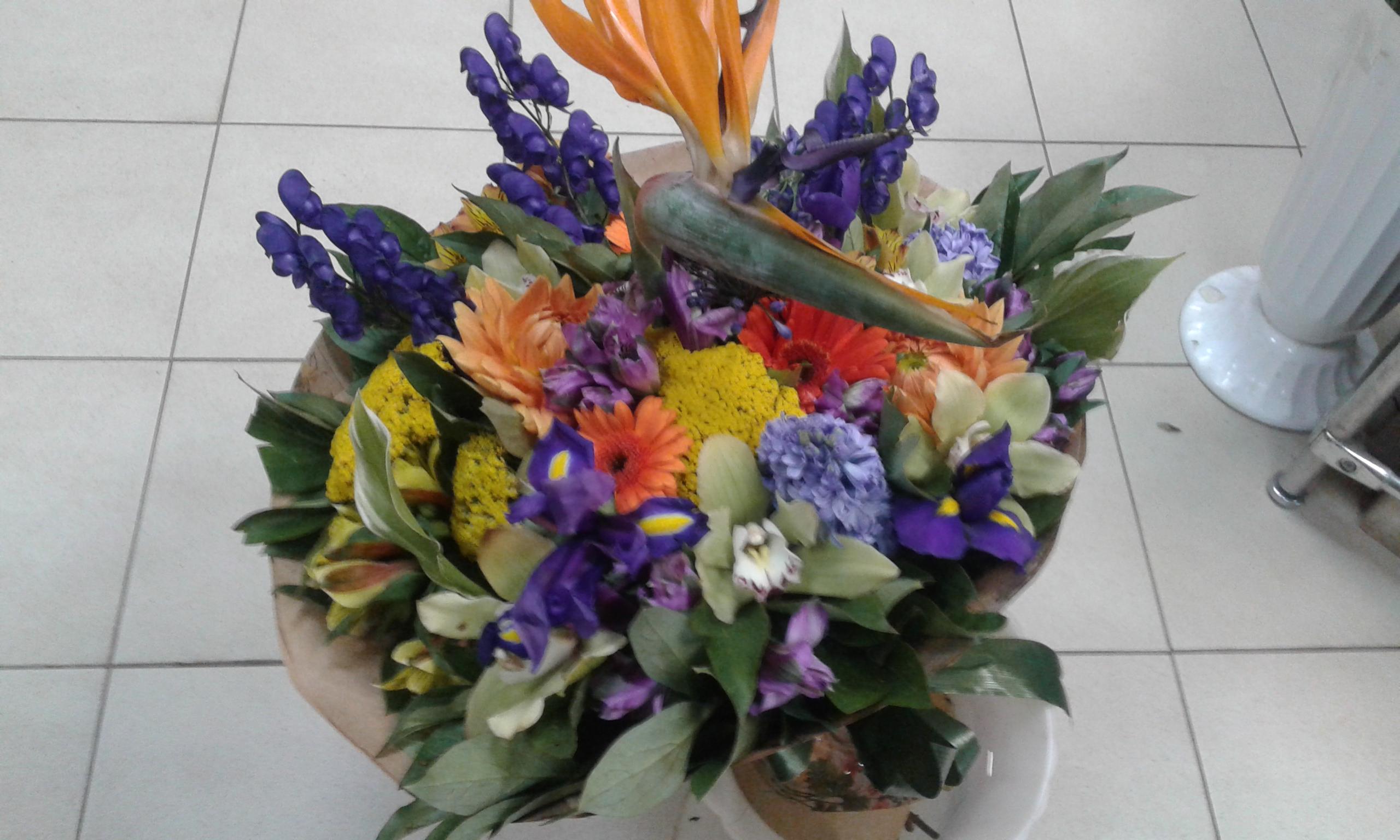 Цветы в костроме цены