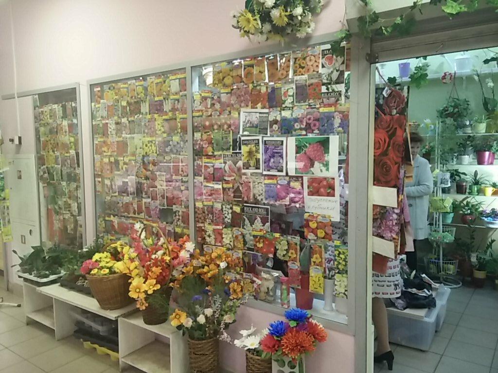 Парусник, магазин красивая цветов в спб красносельский район