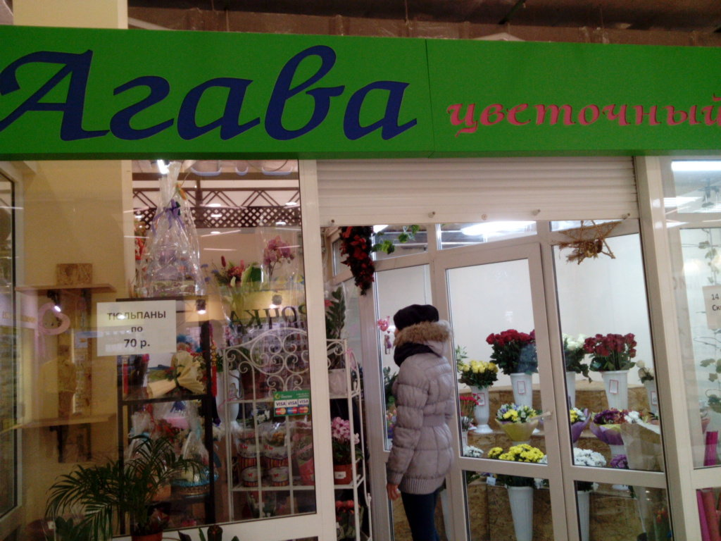 Кафе агава фото с новоукраинское
