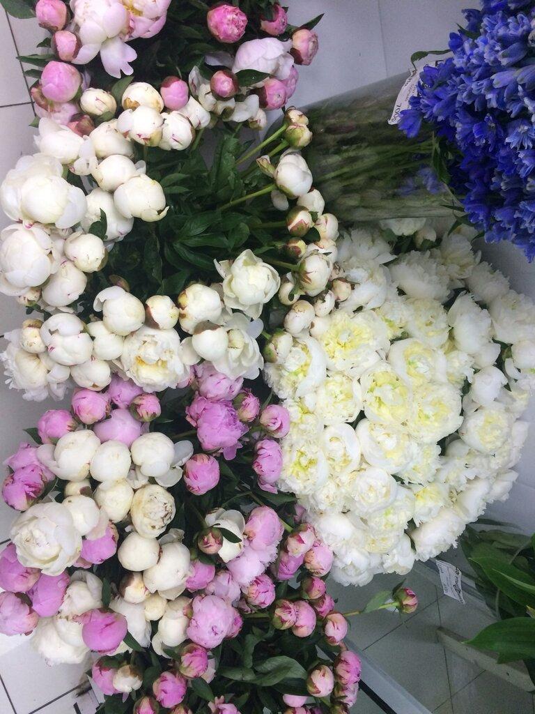 Международная доставка цветов из москву в украины, город бор