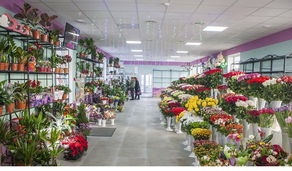 Заказать цветов в украине в николаеве, экзотические