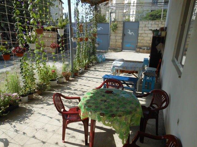 готель — Гостевой дом Ева — село Морское, фото №5
