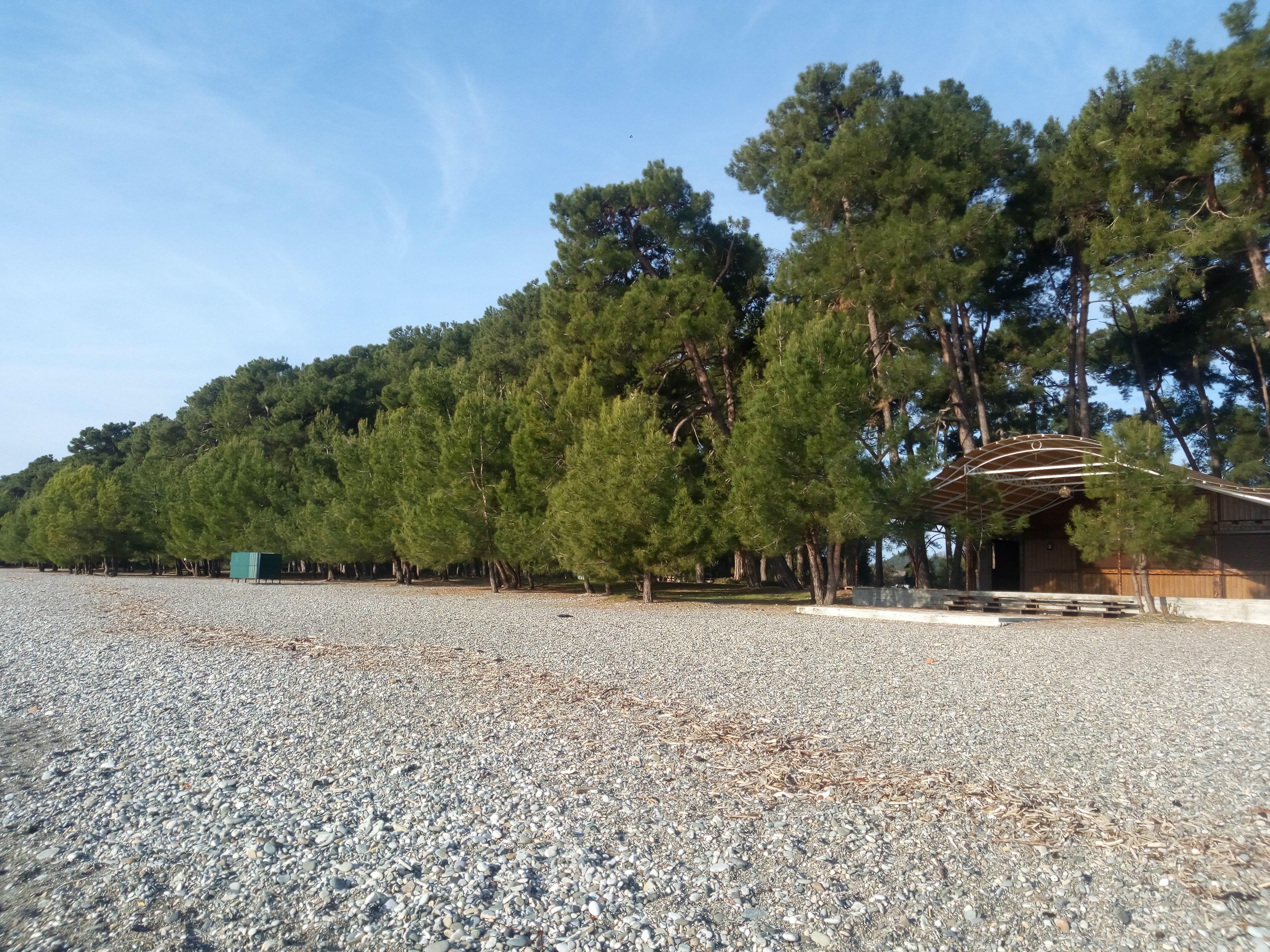 лдзаа пляж в абхазии фото школе