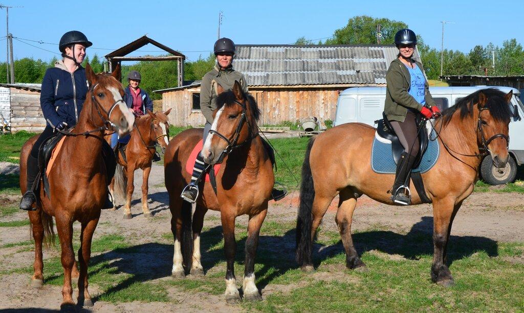 конный клуб — Конная база Добрый Яр — Калужская область, фото №1