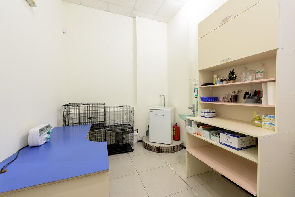 ветеринарная клиника — СитиВет — Санкт-Петербург, фото №8
