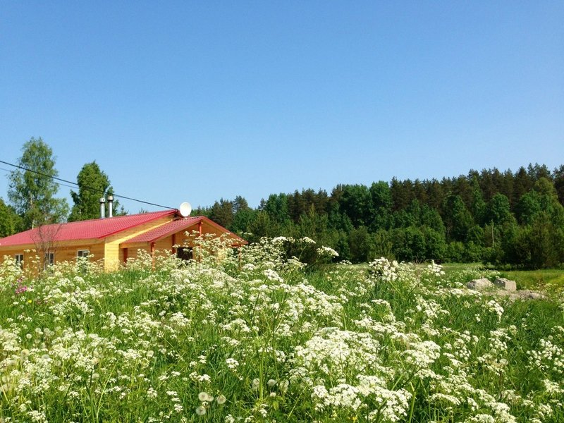 Эко-хутор Ряйсяля