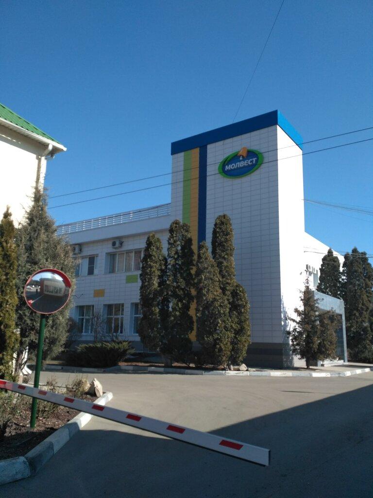 производство продуктов питания — Молвест — Воронеж, фото №3