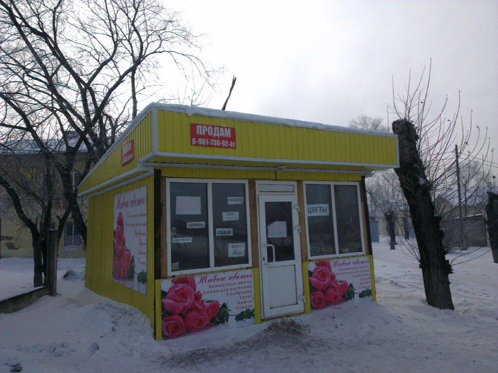 Доставка цветов в белово кемеровская область на дом, букетов волгоград