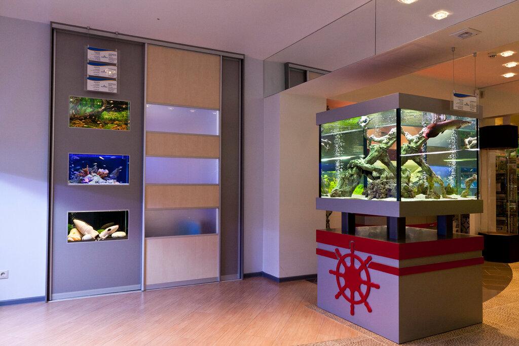 данного картинки аквариумного магазина визит мексиканской части