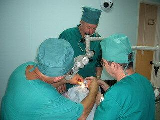 ветеринарная клиника — Ветеринарная клиника Доктора Бурлакова В. П. — Санкт-Петербург, фото №1