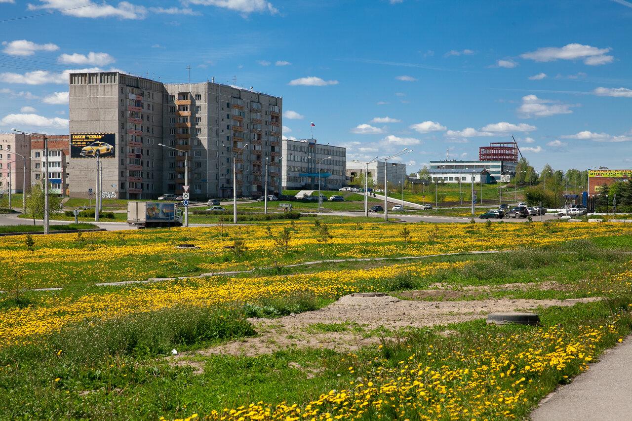 Новоильинский район картинки