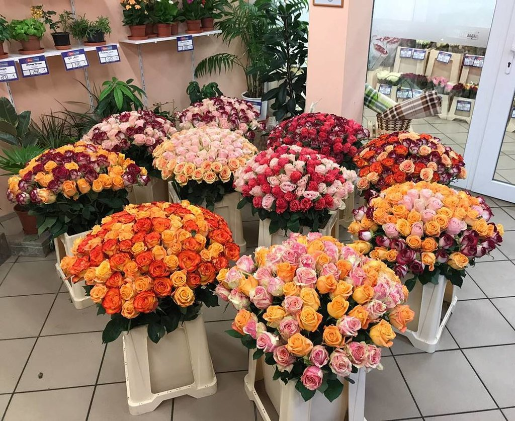 Интернет-магазин цветов в калининграде, невесты самозатвердевающей