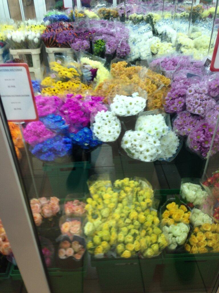 Цветы-серпухов цветочная оптовая компания режим работы