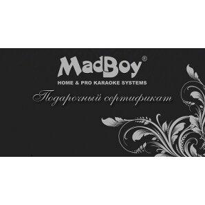 звуковое и световое оборудование — Madboy караоке — Москва, фото №7