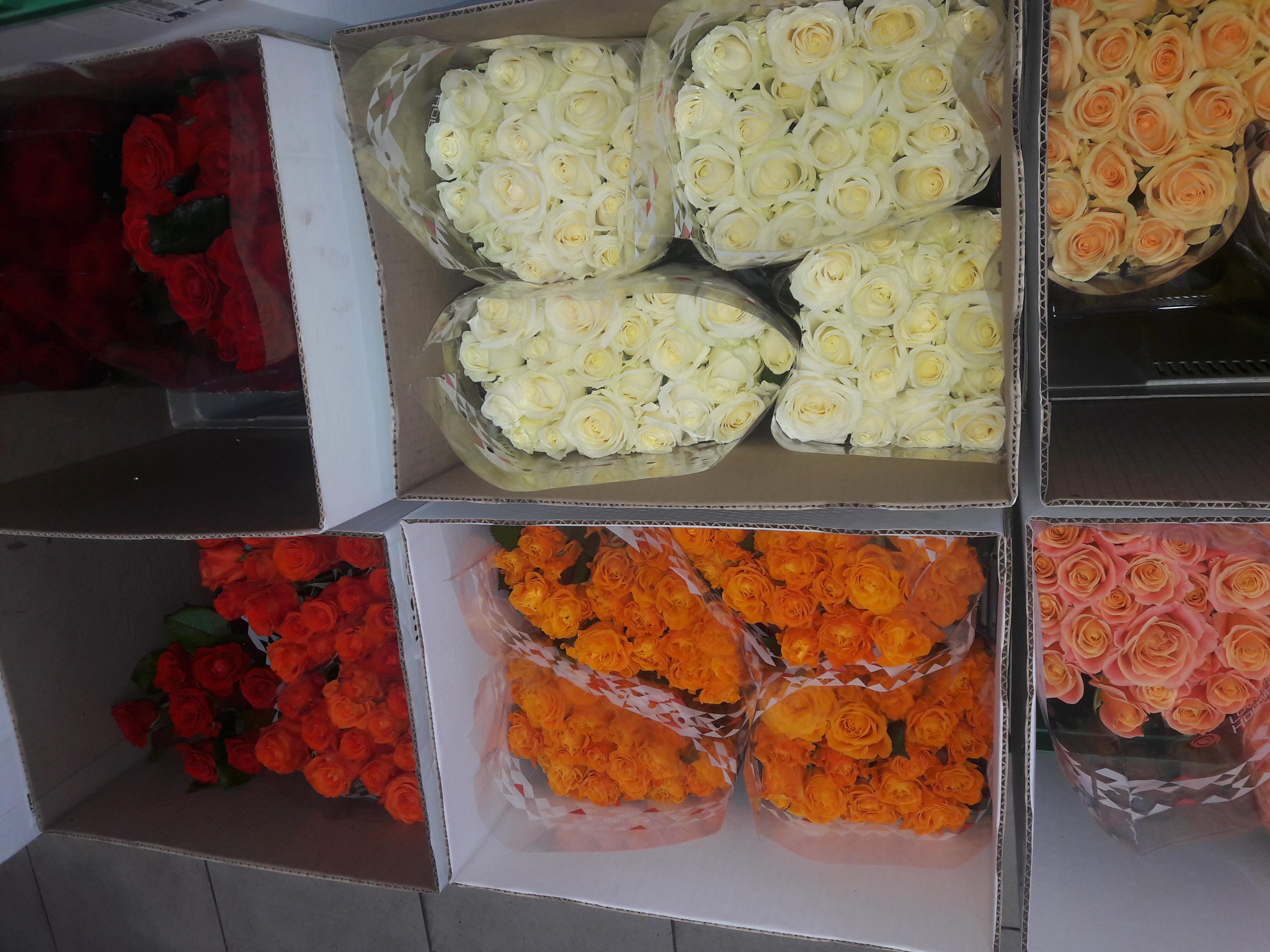 Обзор оптовый рынок цветов ростов черевичкина, магазин цветов одинцово