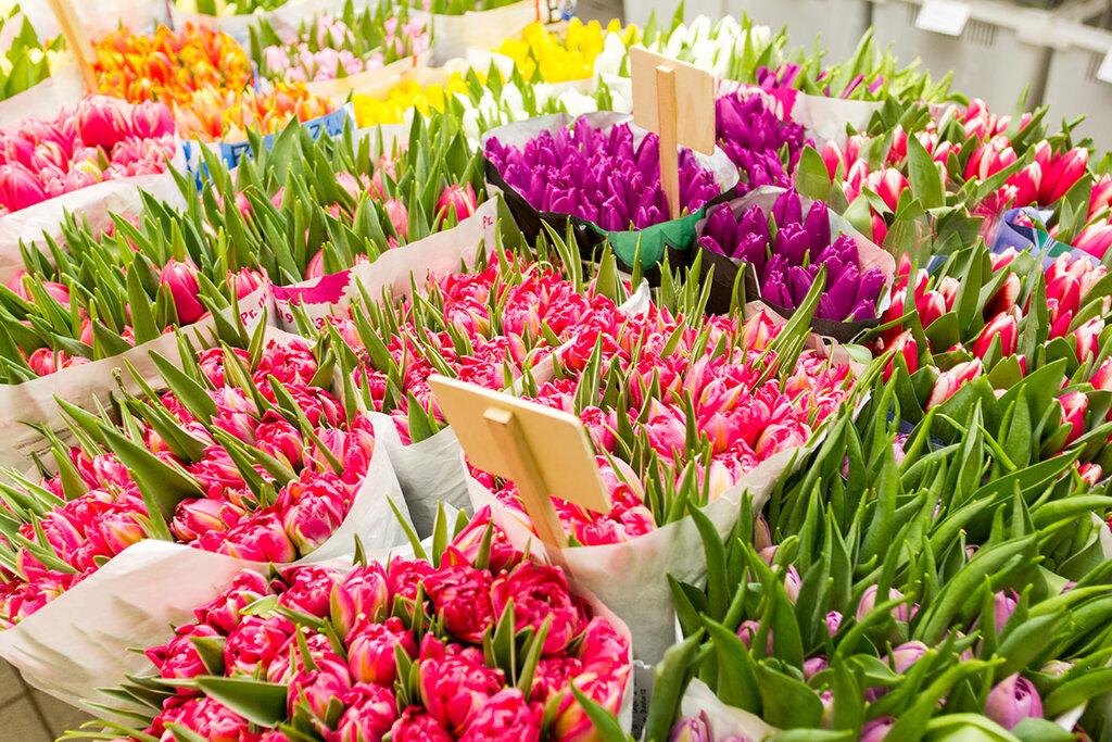 магазин цветов — Цветочный остров — Москва, фото №8