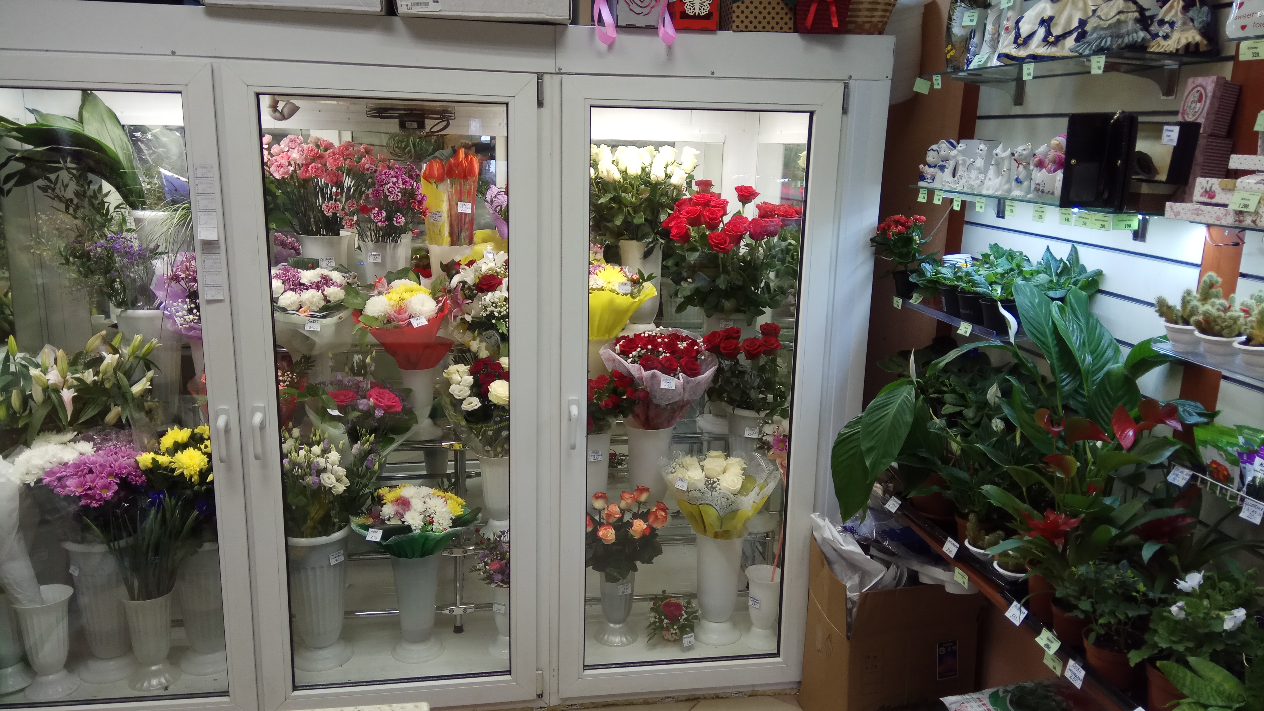 Интернет магазин цветы в спб