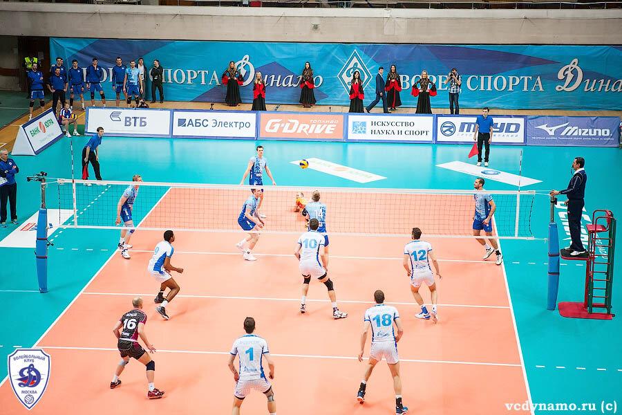 Волейбольный клуб динамо москва где играет ночной клуб благовещенск королева