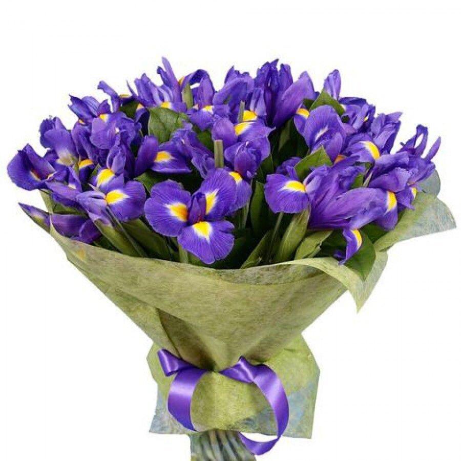 дневном цветы для мужчины на день рождения фото применение данного