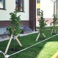 Мир Дорог, Услуги дорожного строительства в Терновском районе