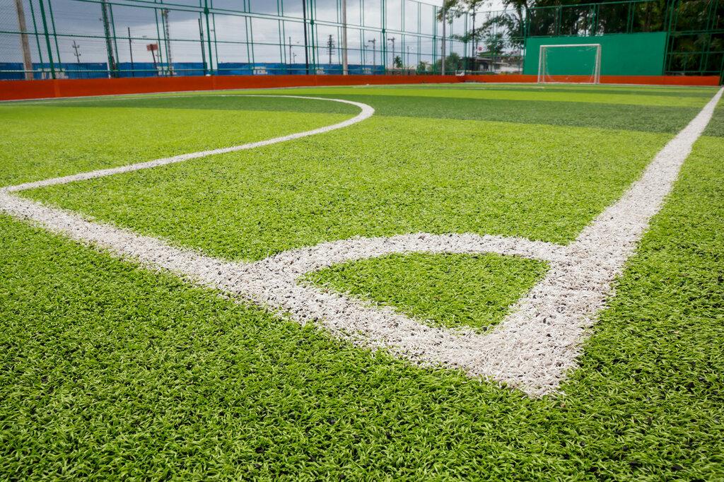 искусственная спортивная трава