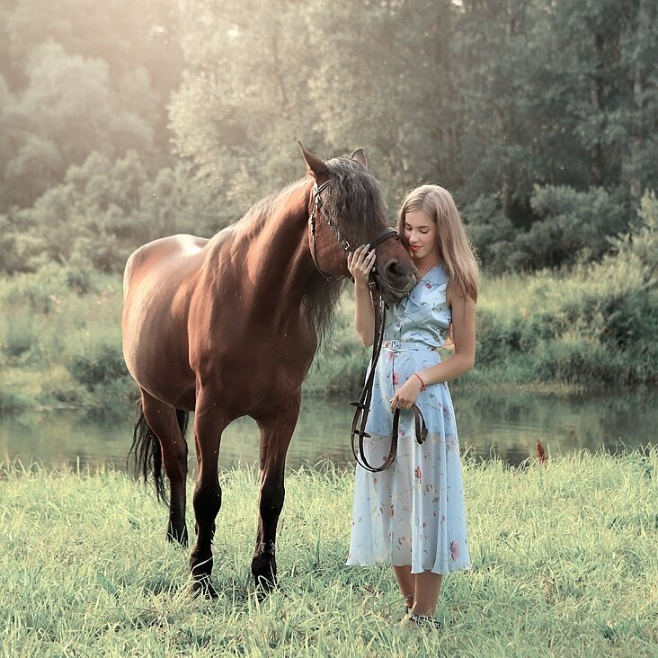 Конный клуб Рыжая Лошадь