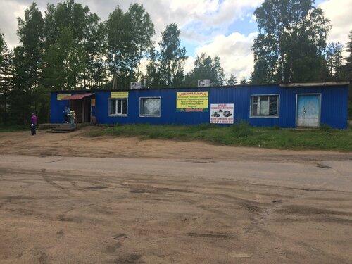 днк кировский орехово-северного пмассива сосновского поселения