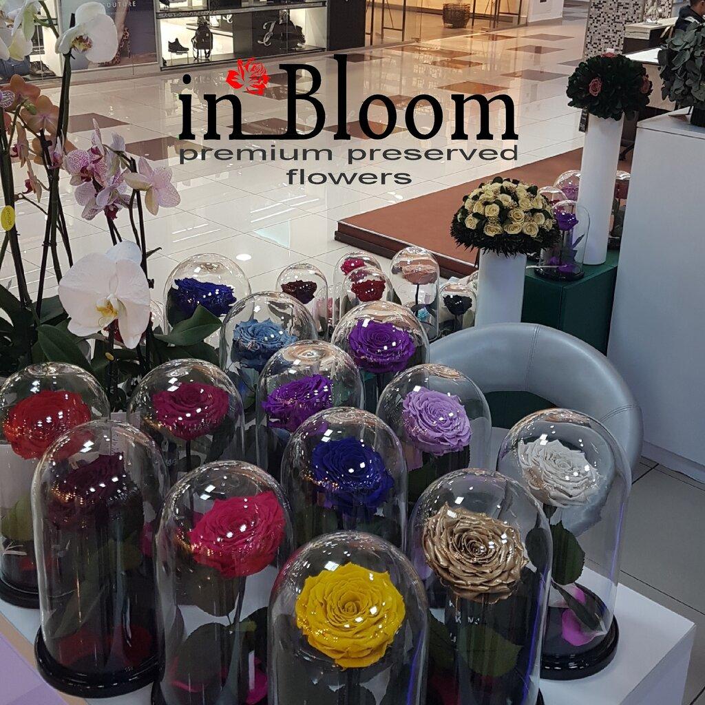 Купить цветы в пятигорске русский бутик